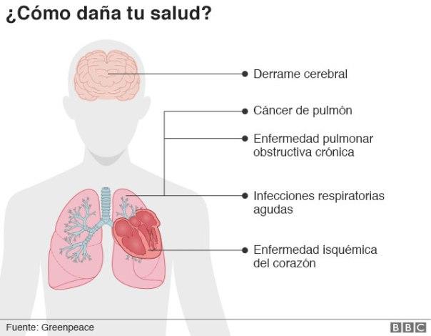 Gráfico que muestra las enfermedades que causa la PM2.5
