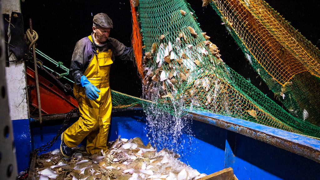Trawler fishing in the English Channel, August 2020