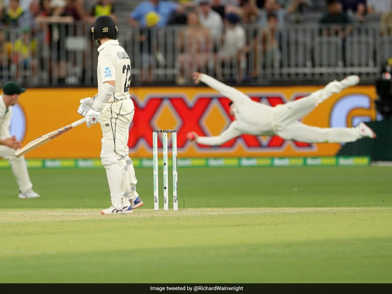 Australia vs New Zealand: Steve Smith Takes One Of The Best Catches You