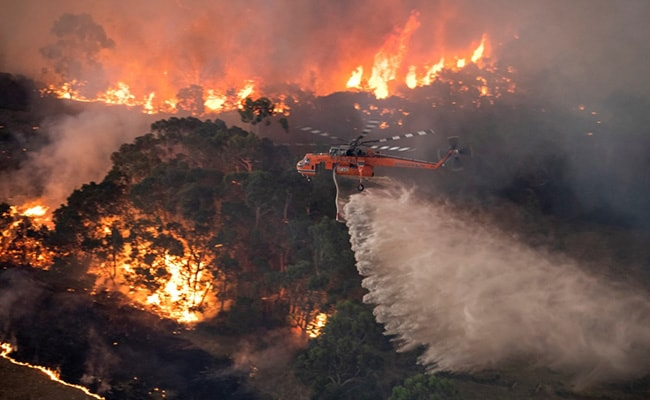 Australia Bushfires Spewed As Much Smoke Into Stratosphere As Volcano: Study