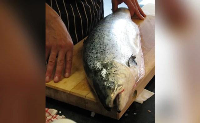 Norwegian Salmon Not Source Of Virus Outbreak In Beijing Market: Oslo