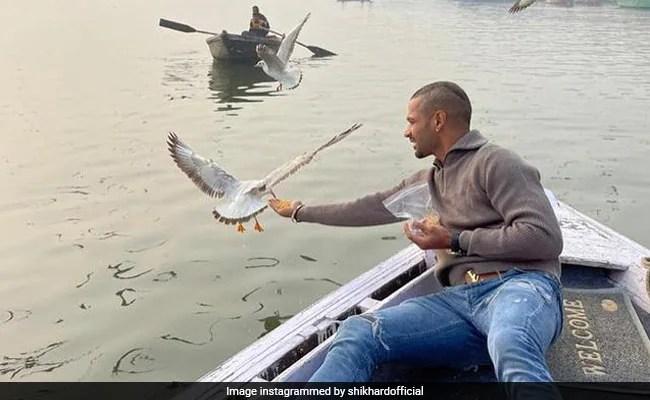 Shikhar Dhawan Feeds Birds On Varanasi Boatride, Boatman May Face Action