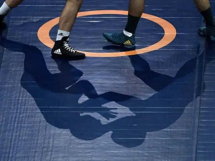 Indian Wrestlers Will Win Four Medals In Tokyo Olympics: WFI President