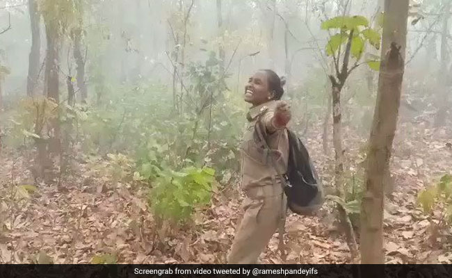 Forest Officer Dances In Joy After Rain Comes To Fire-Hit Simlipal