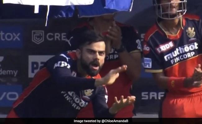 RCB vs KKR: Virat Kohli's Reaction To Glenn Maxwell's Fifty Is Now A ROFL Meme