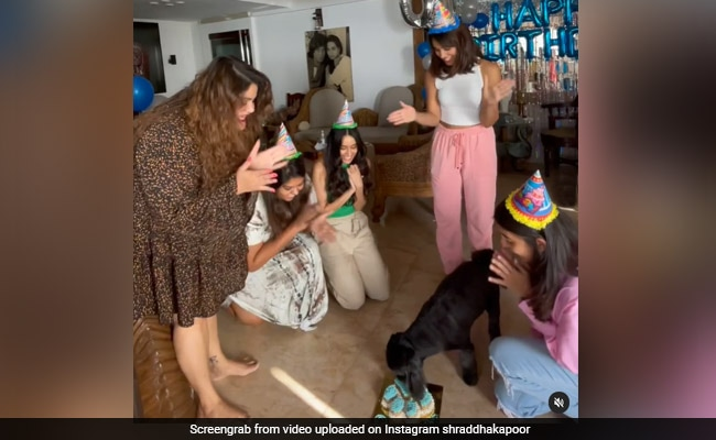 Shraddha Kapoor Had A Birthday Party For Pet Pooch Shyloh, 10. See Pics