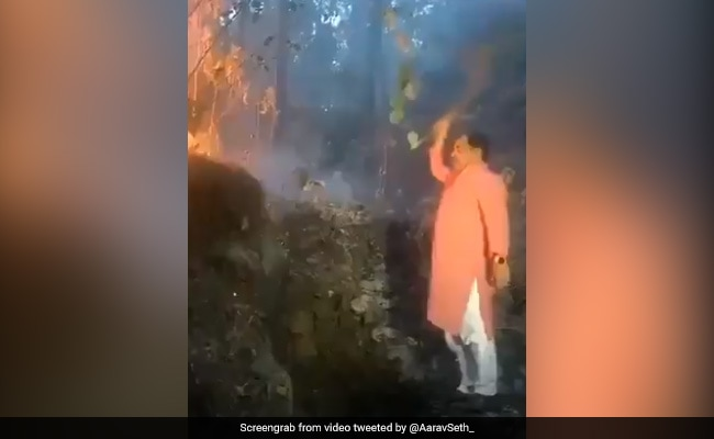 Watch: Uttarakhand Minister Fights Forest Fires With Shrub As Camera Rolls