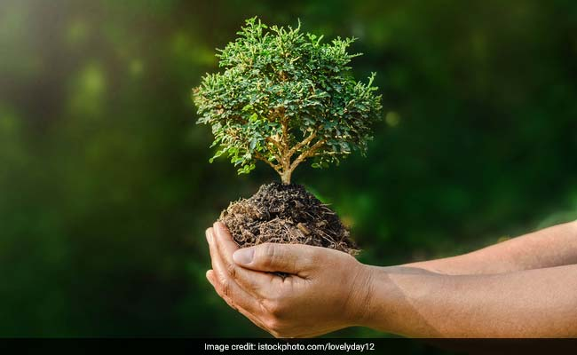 World Nature Conservation Day: Date, Day, History, and Significance
