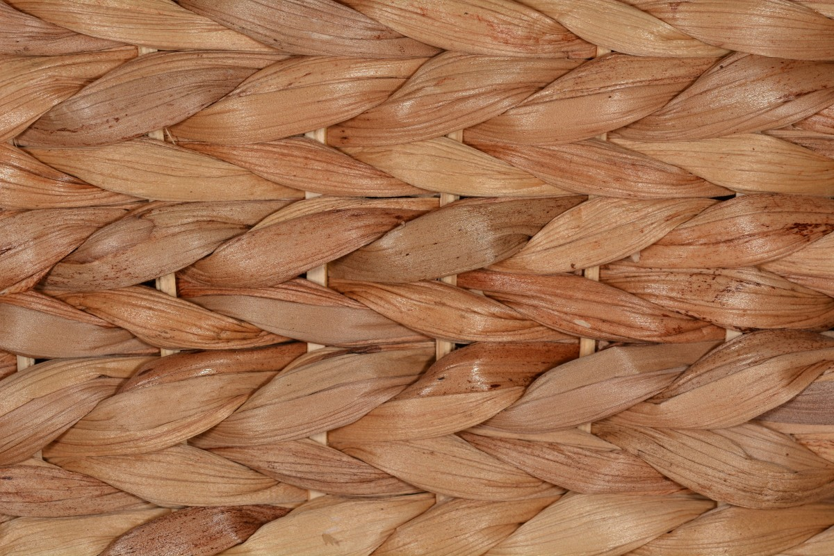 Free Images Structure Wood Hair Texture Food