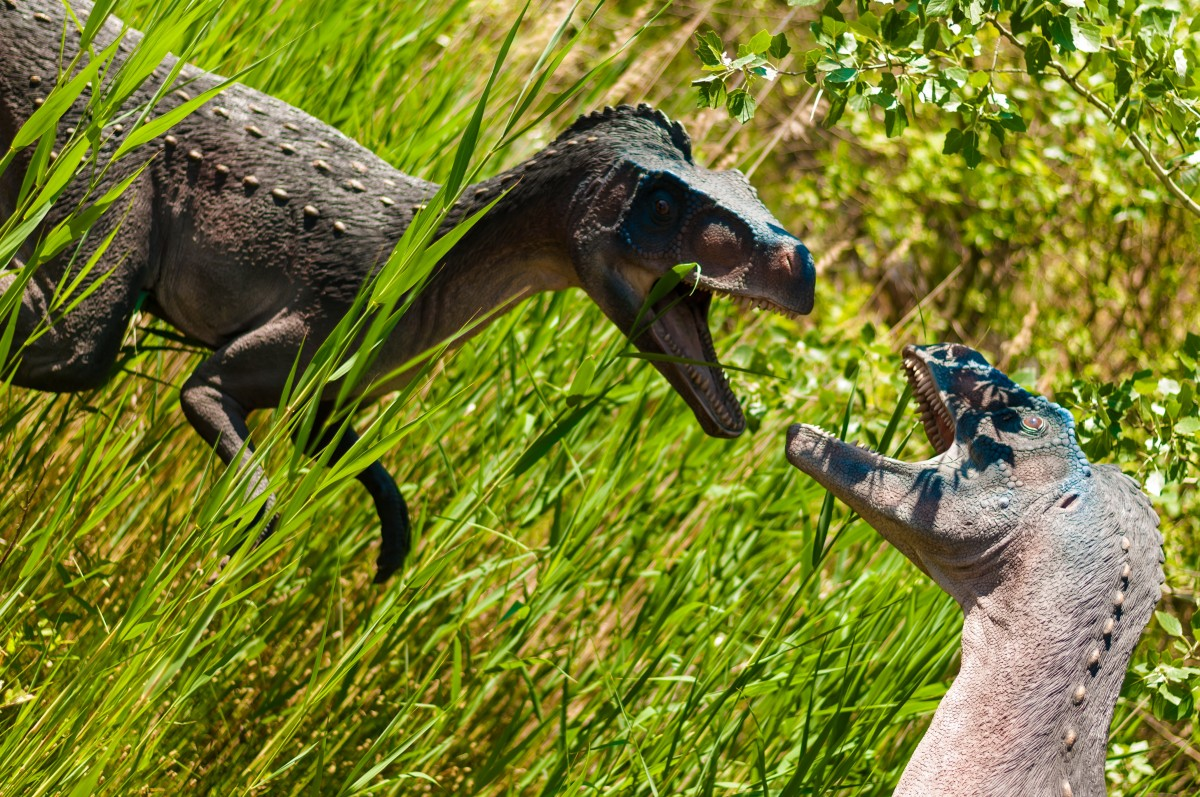 Bildet Dyr Fauna Stor Reptiler Dinosaur Sterk