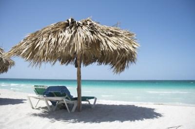 Free Images : beach, sea, coast, tree, sand, ocean, shore ...