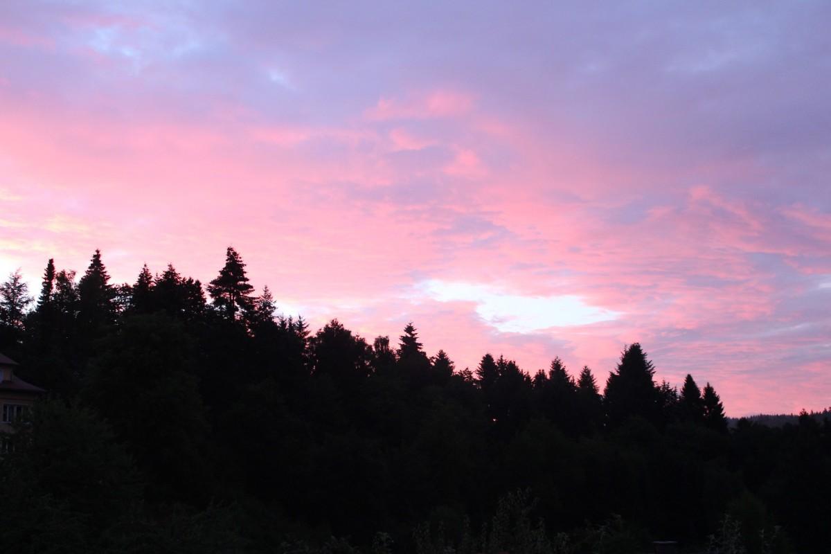 Free Images Landscape Tree Horizon Sunrise Sunset