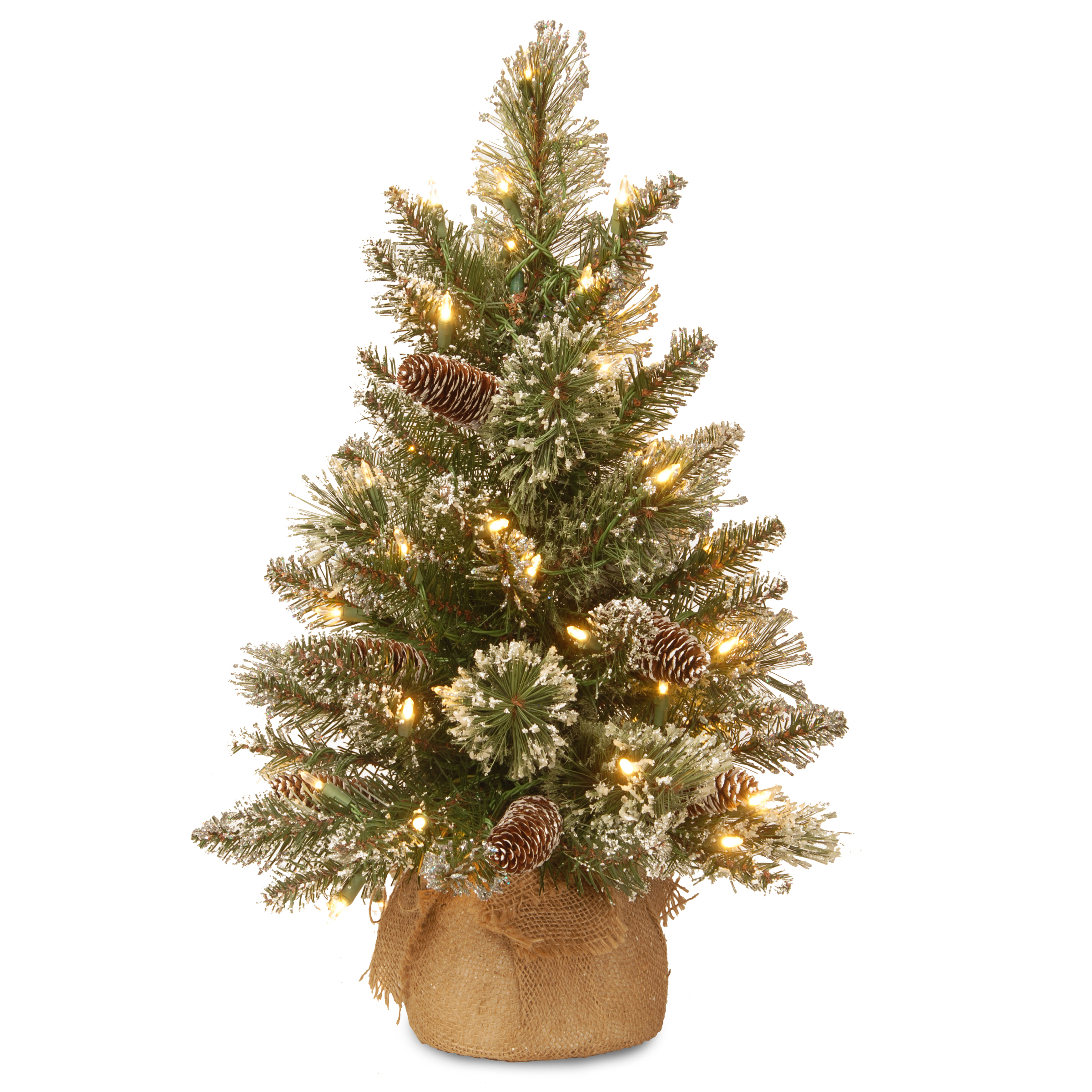 National Tree Company 2Ft Glittery Bristle Pine Burlap Tree With LED Lights
