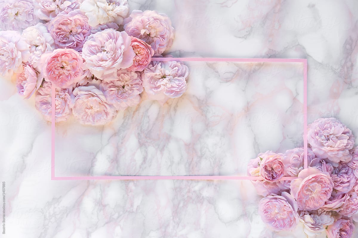 Pink Flower Decoration On A Marble Background Stocksy United