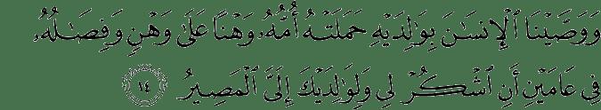 Surat Luqmān (Luqman) - سورة لقمان 31:14