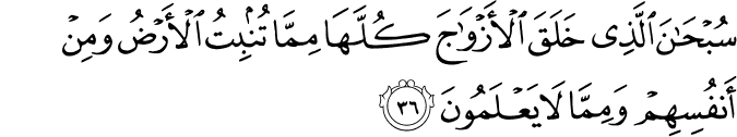 Tafseer Surah Yaseen 36-40 | In the Pursuit of Writing