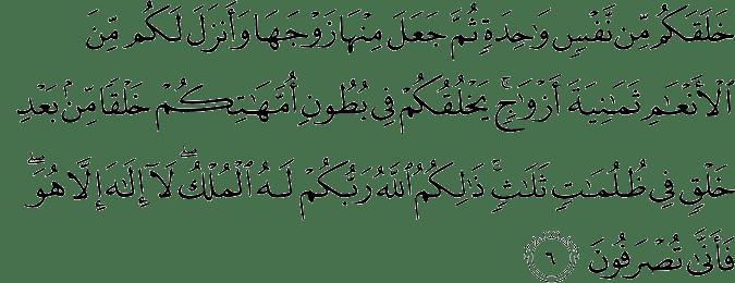 Surat Az Zumar Ayat 1 75 Al Quran Dan Terjemahan
