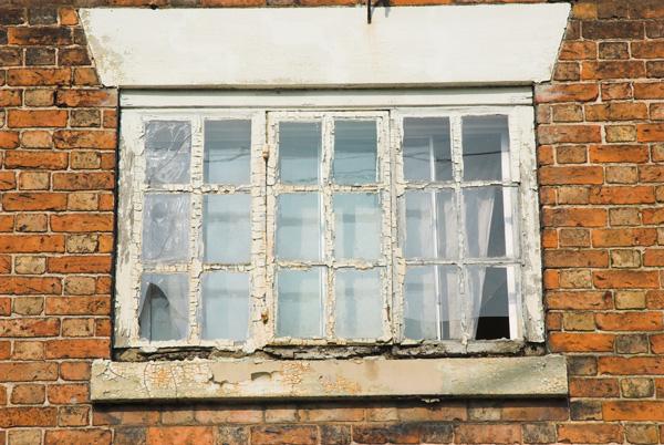 windows rot