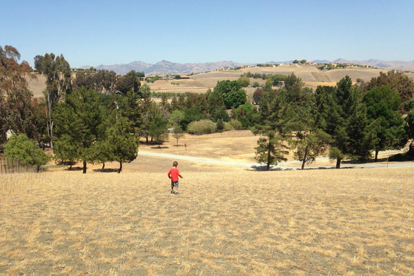 Dry yard in California drought