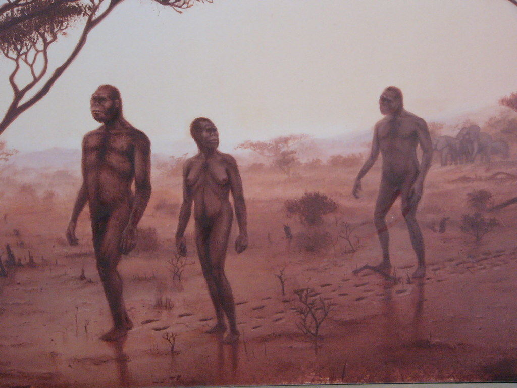 Sources Of Laetoli Footprints