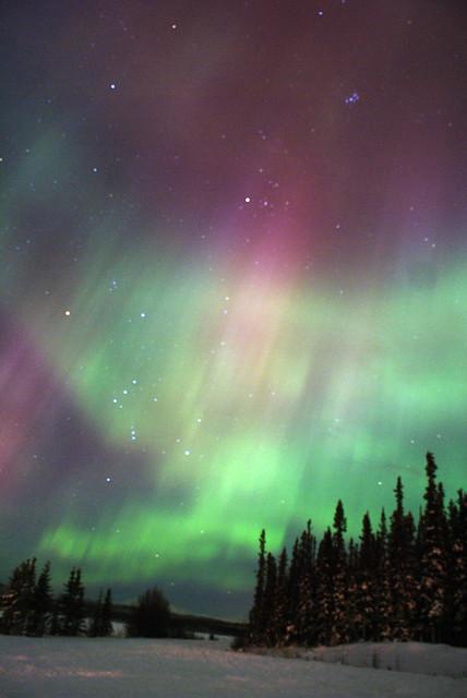 Aurora In Whitehorse Yukon Canada Taken At Lake