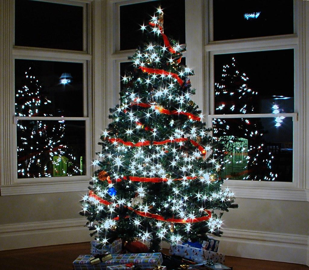 Christmas Tree In The Bay Windows IMG4967 Xmastree