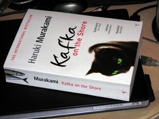 Image result for kafka on the shore book