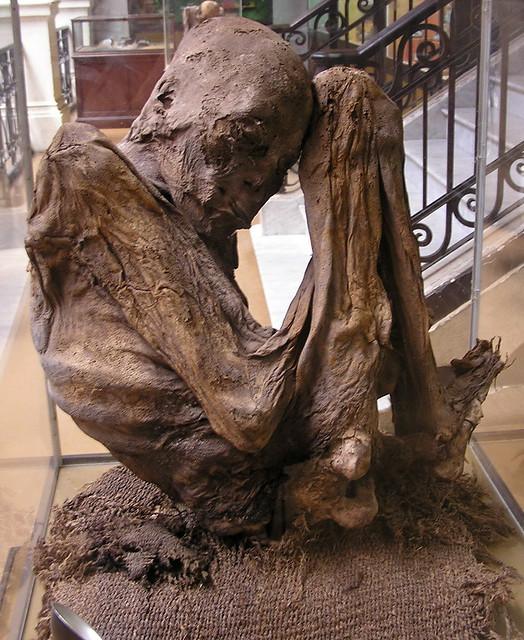 momia Museo de Ciencias Naturales La Plata Argentina 139