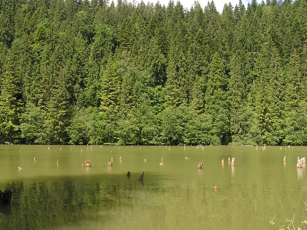 Lago Rojo Rumania 6