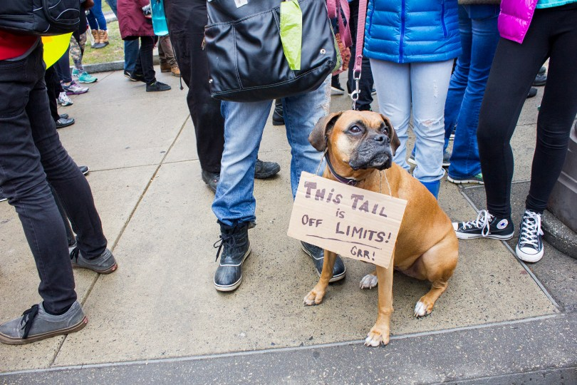 womens-march-2017-philly-philadelphia-dog-sign