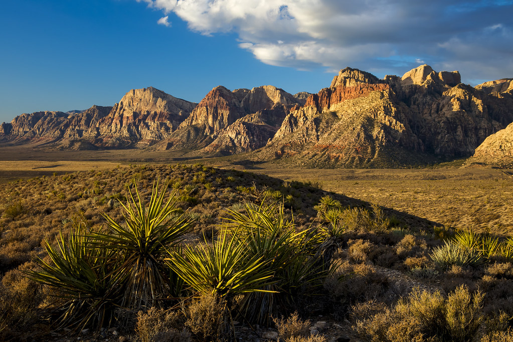 Red Rock Canyon National Conservation Area Welcome To