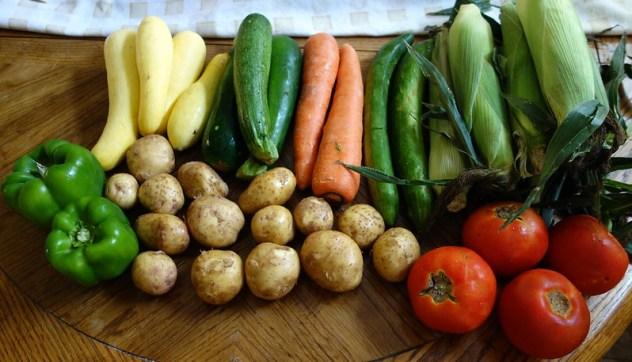 Homestead Creamery Week 10 Vegetable Delivery