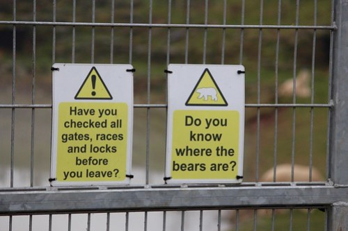 Do you know where the bears are?