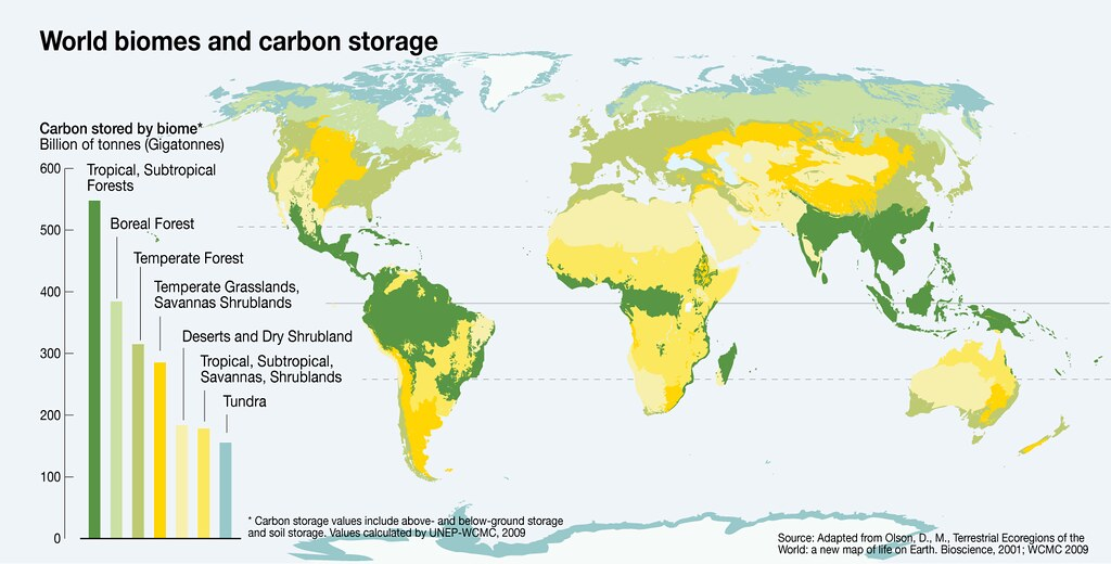 World Biomes And Carbon Storage According To The Fao