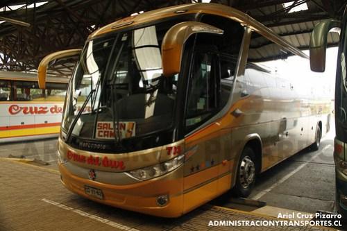 Cruz del Sur - Castro - Marcopolo Paradiso 1050 / Volvo (CDVY62)