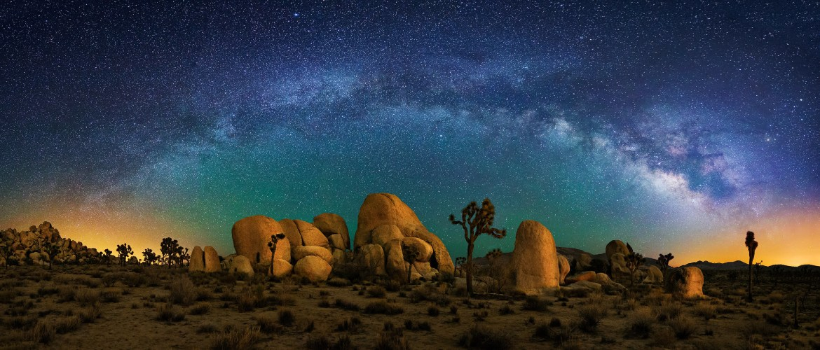 Joshua Tree and Milky Way Panorama