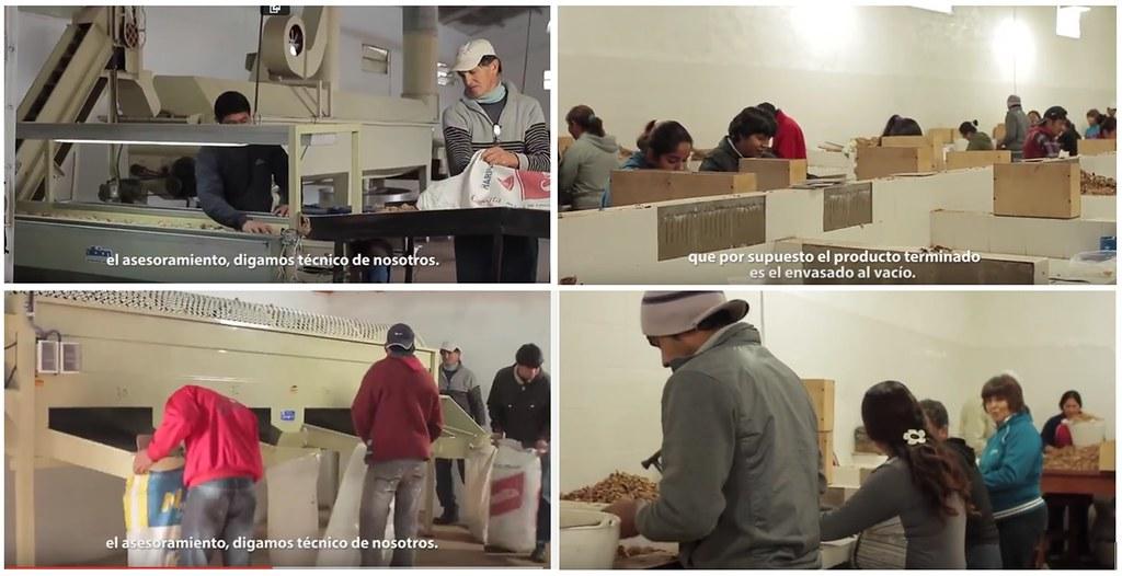 Minera Alumbrera apotó la maquinaria, lavadora, calibradora, envasadora al vacío, y los hornos de secado.