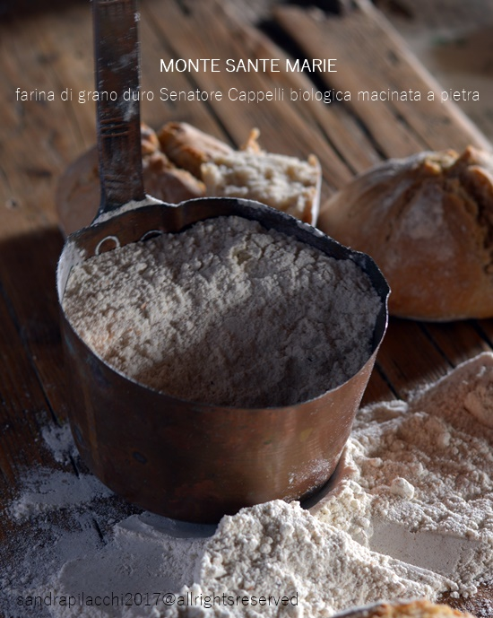 pane al cioccolato e frutta secca senatore cappelli monte sante marie