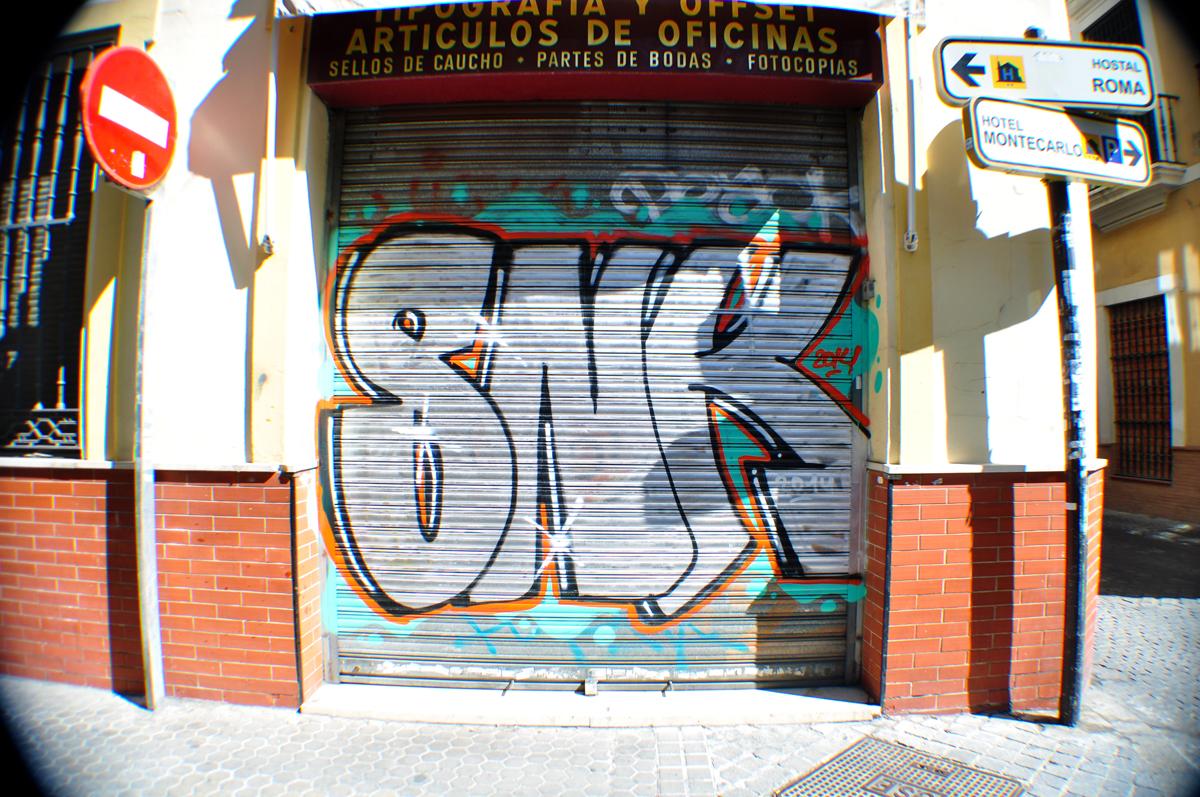 SNK (2)