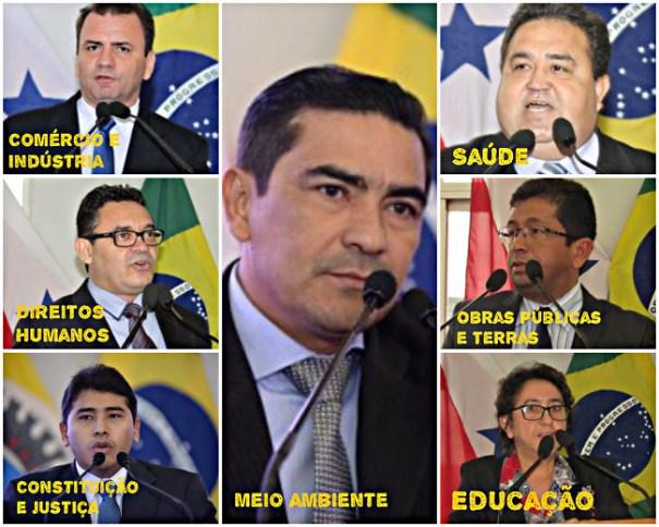 Saiba quem são os 8 presidentes das comissões da Câmara de Santarém, Presidente de Comissões da Câmara de Santarém - 2017/2018