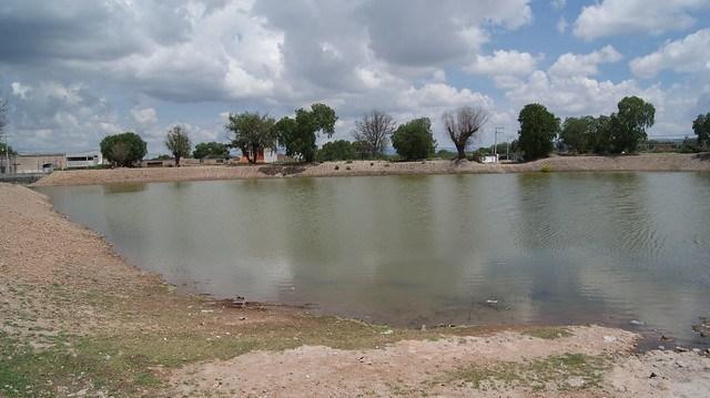 Se han realizado 3,295 obras para capacitación de agua en beneficio de ganaderos: SEDARH