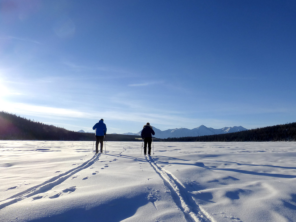 Cross Country Skiing Make Your Own Track Taiga