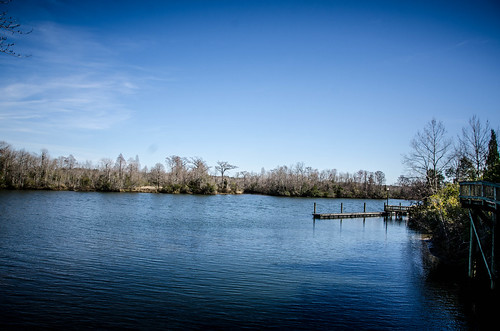 Old Santee Canal Park-47