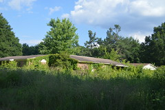 020 Horton Gardens