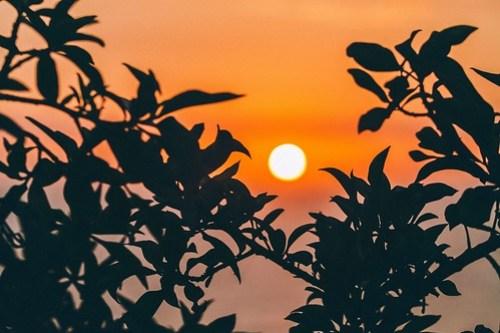 Orange Sun from Stocksnap