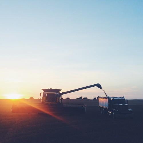 Z Crew: We work in acres, not hours