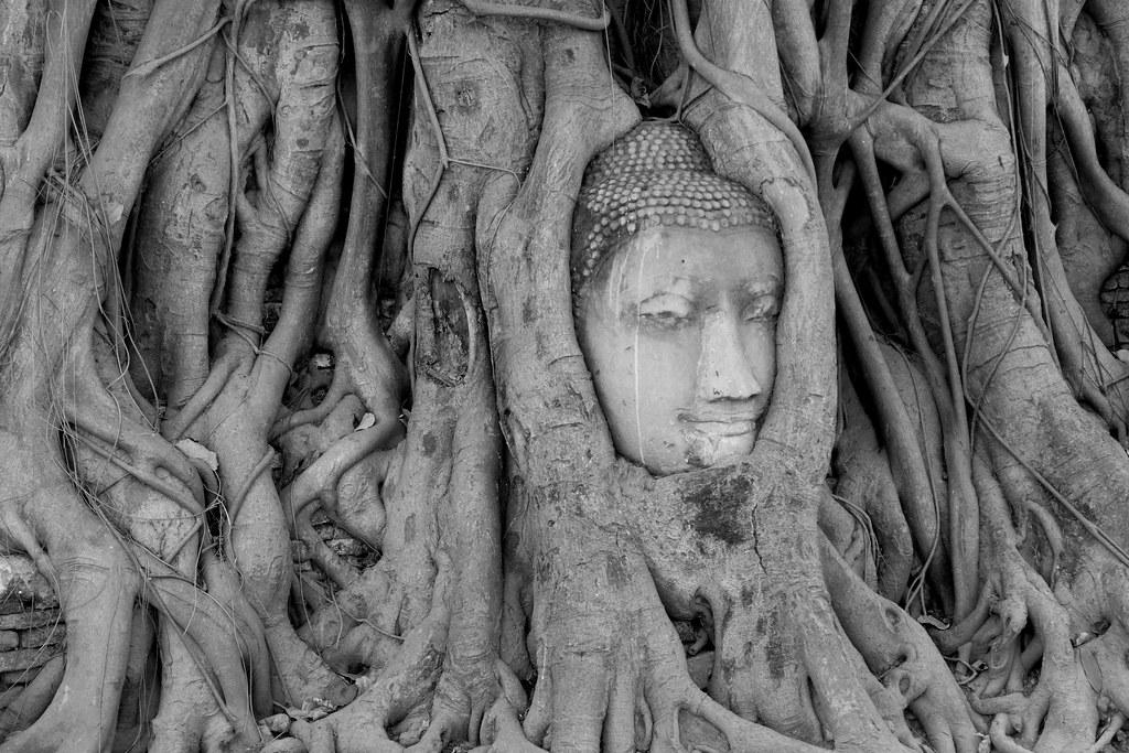 Thaïlande - Ayutthaya - 014 - Wat Maha That