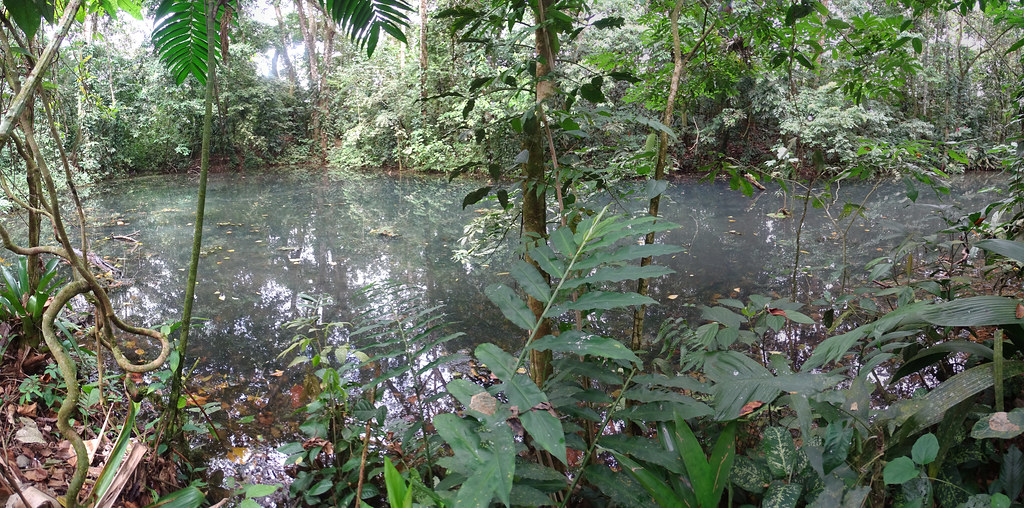 La Fortuna Ecocentro Danaus Reserva Biológica Costa Rica 02