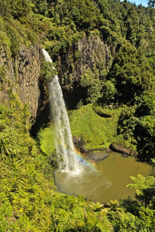 Bridal Veil Falls in New Zealand's Waikato region is a must-see for nature lovers. It's a stunning waterfall and a worthwhile stop on a road trip!