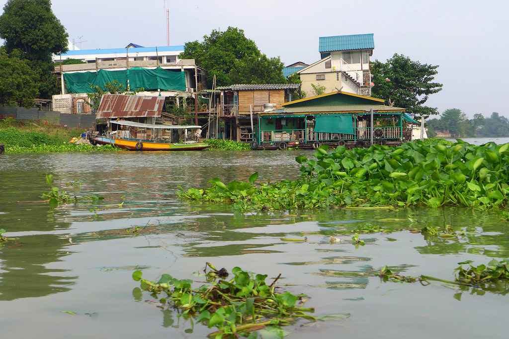 Thaïlande - Ayutthaya - 125 - Wat Phanan Choeng